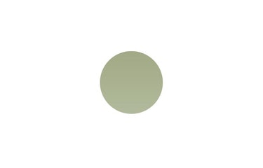 Ärggrön 975 (nærmeste NCS S3020-G10Y)